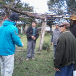 Secretaria da Agricultura promove curso de podas de árvores frutíferas